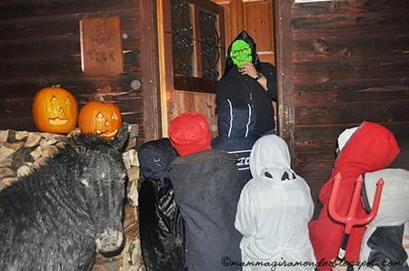 HalloweenDSC_0183