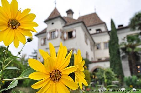 castel rundeggDSC_1230