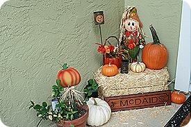 Daisy Month 19_pumpkinpatching 042