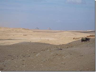 12-29-2009 041 Saqqara - view of Giza pyramids