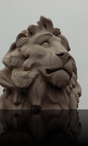 crying-lion