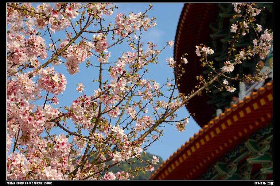 20100311天元宮