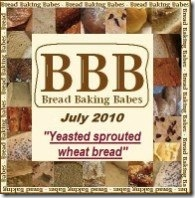 BBB logo july 2010