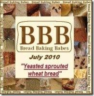 BBB logo july 2010