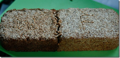 Wheat-Farro brick-01