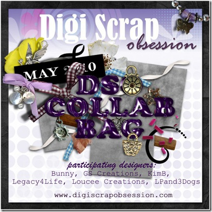 DSO-MAY-2010-COLLAB