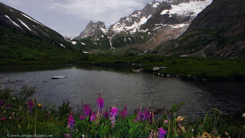 Courmayeur su Lac Miage