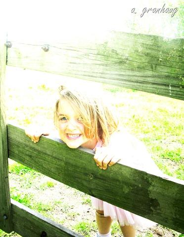 Klara fence omni light