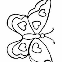 Riscos - Insectos (8).jpg