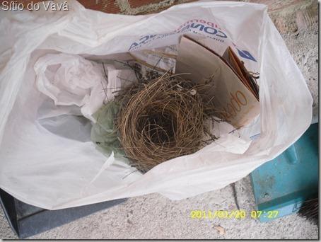 ninho de casaca de couro em sacola plástica