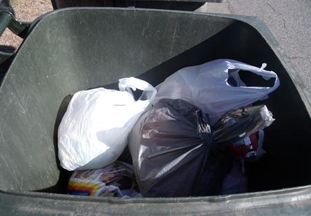 rubbish 13.01.10