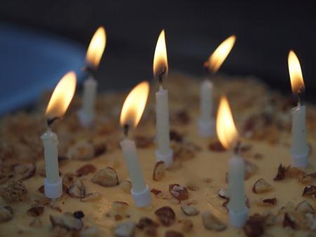birthday candles on my baked hazelnut cheesecake
