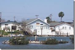 South Padre Island 051
