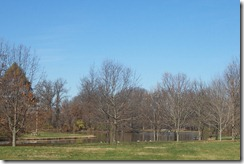 Fall 2009 064
