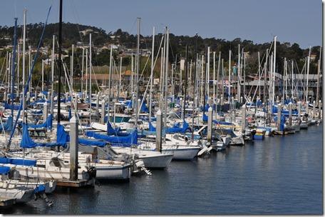 Monterey, Ca 029