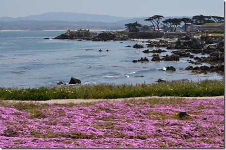 Monterey, Ca 050