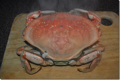 Crab 002