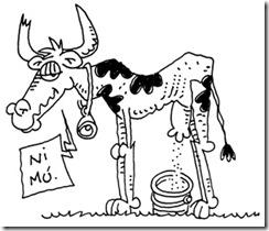 vaca flaca - 2