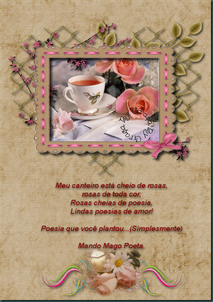 Canteiro de rosas