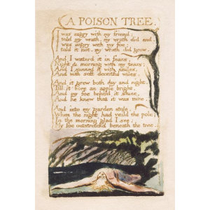 A Poison Tree Cover