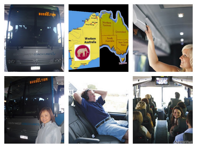 south%20west%20coach%20lines%20collage.jpg