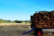 Getreideernte © H. Brune