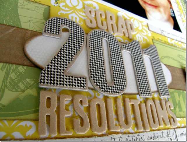 2011resolutions2
