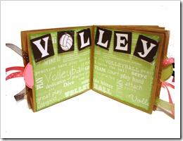 volley 002
