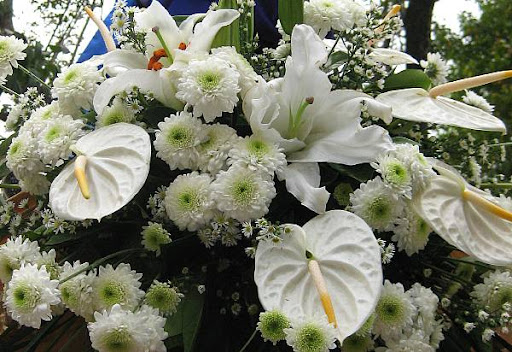 white flowers decorating a carroza