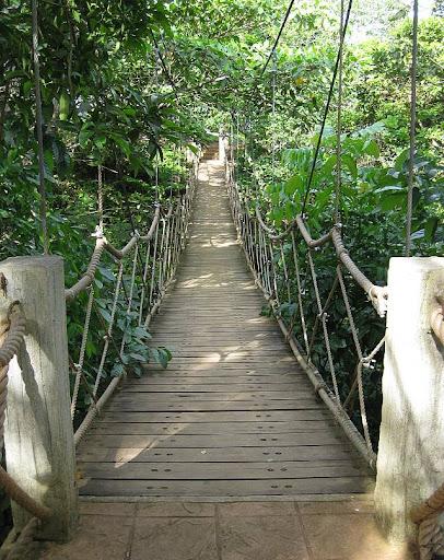 hanging bridge in Caleruega in Batangas