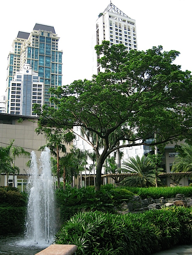 high-rise condominium buildings surrounding Greenbelt Park