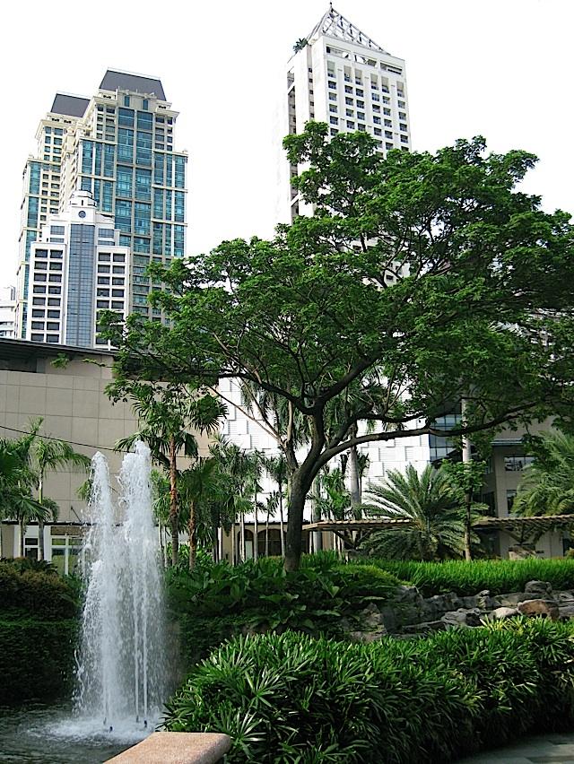 high-rise condominium buildings surrounding Greenbelt Park