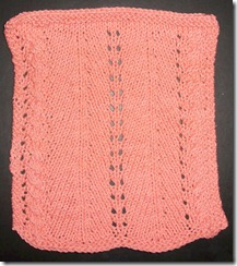 July 2010 Mid Month Dishcloth