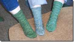 Embossed Leaves Sock Trio 1