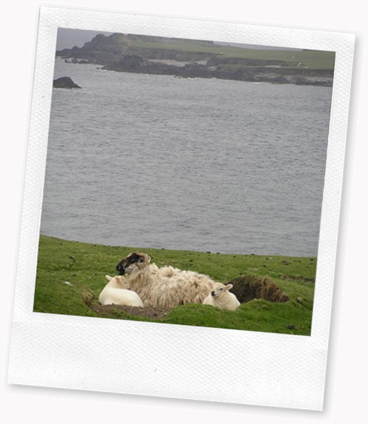 IRELAND_1217557297BLdB9Sr