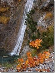 Natura in Albania