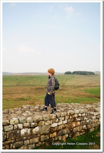Housesteads3