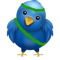 twitter-bird-big iran