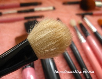 dried charm blush brush, by bitsandtreats