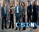 CSI : New York
