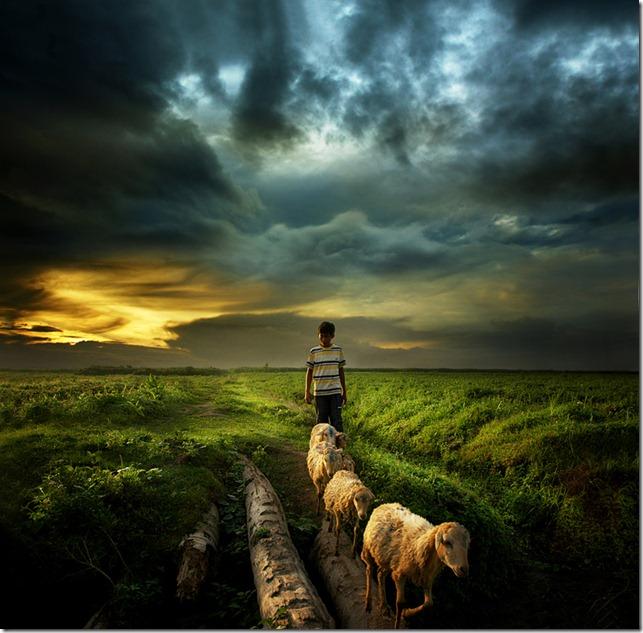 Go home by Teuku Jody Zulkarnaen