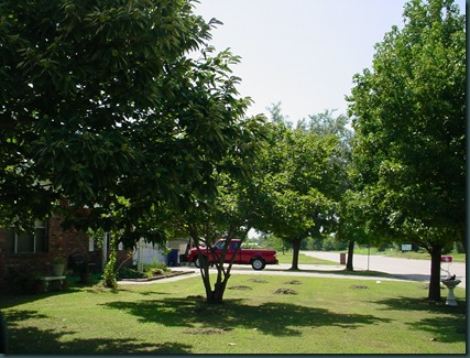 home to Joplin 027