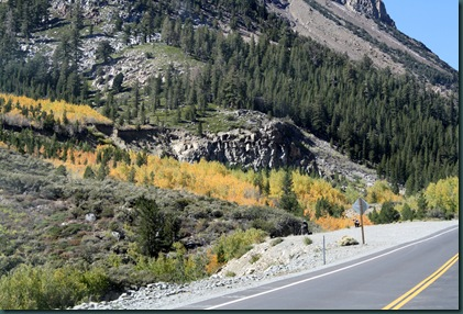 To California via Yosemite 119