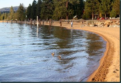 LAKE TAHOE 082