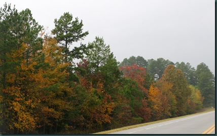 SE OK fall colors 087
