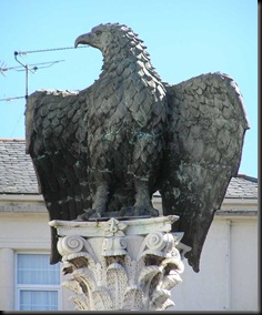 aguia imperial