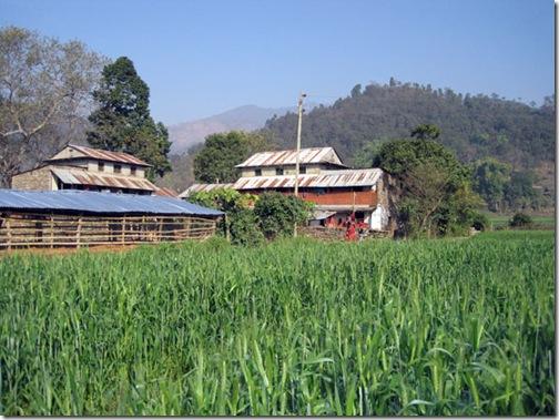 Aarughat-village