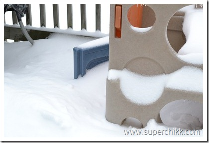 097 Snow Days, February 2011