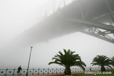Fog_amarjits (2)