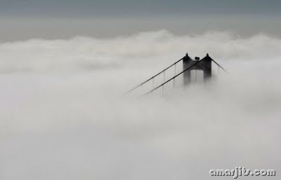 Fog_amarjits (5)